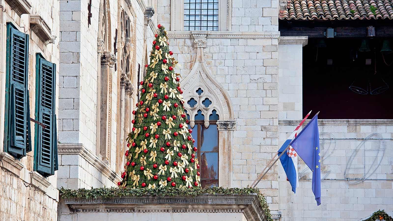 Photo: Christmas Tree in Dubrovnik, Dubrovnik Winter Festival
