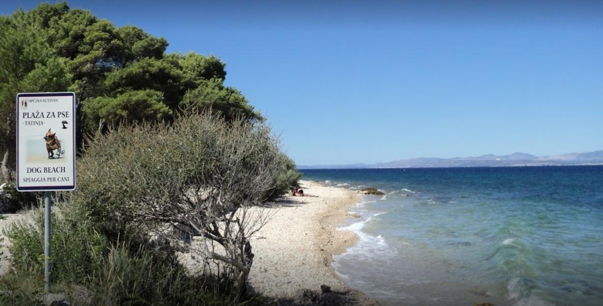 Dog-friendly beach in Sutivan on Brac