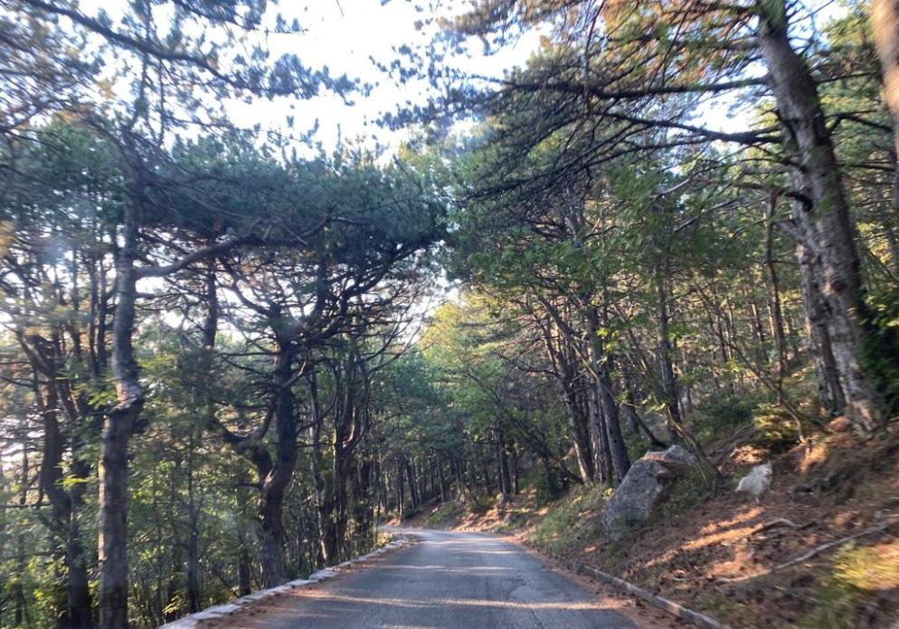 Road to Skywalk Biokovo