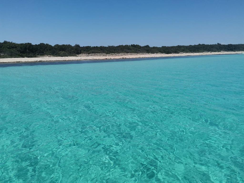 Plaža Sakarun na otoku Dugi Otok