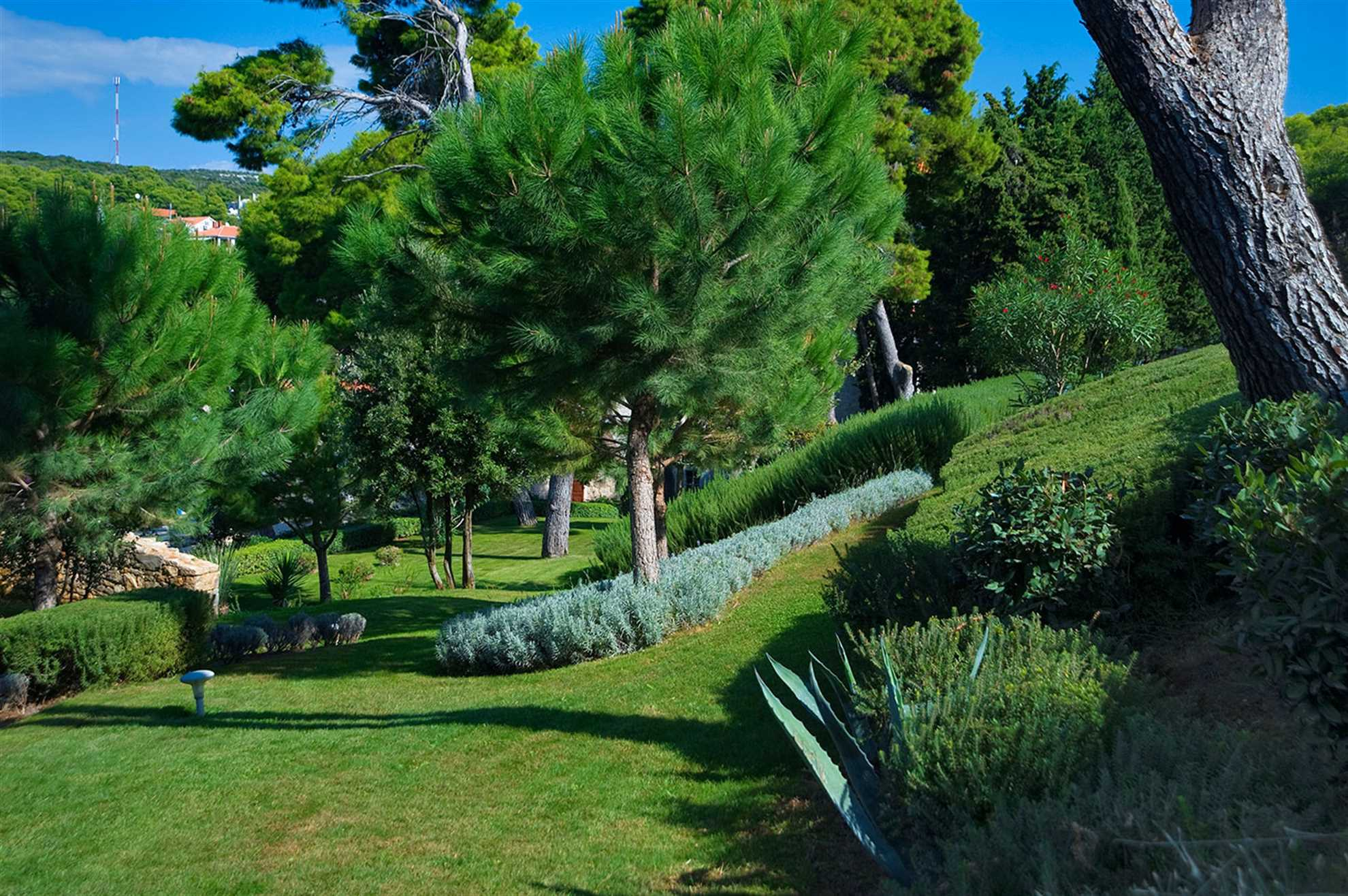 Garden of Heritage Villa M&M Solta